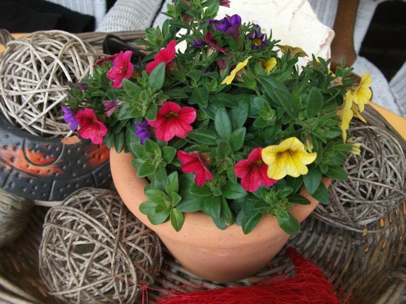 dekoideen terrasse April   Blumendeko Ideen für den Garten