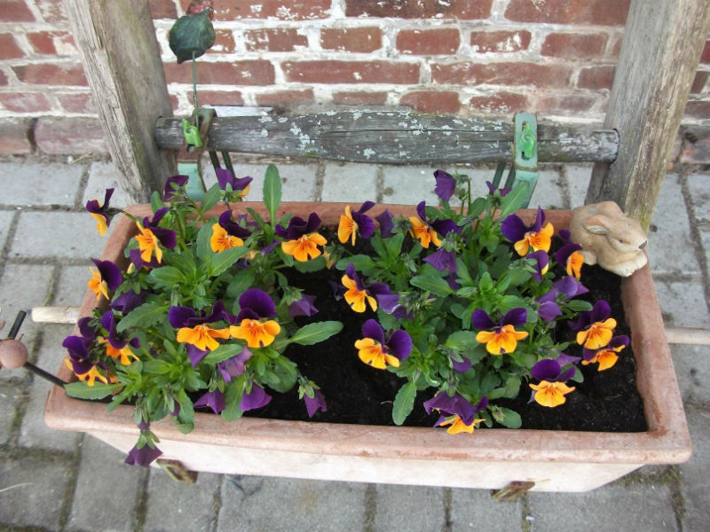 garten deko April   Blumendeko Ideen für den Garten