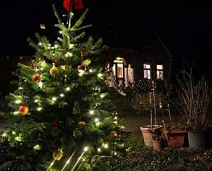 tannenbaum nachts 300x242 Schöne Adventszeit und Weihnachten