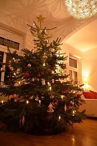 tannenbaum zu hause 199x300 Schöne Adventszeit und Weihnachten