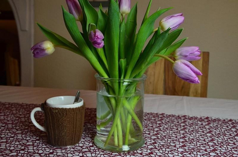 winterbecher und tulpen 800x530 zeig her Eure Tassen #30 Link Party