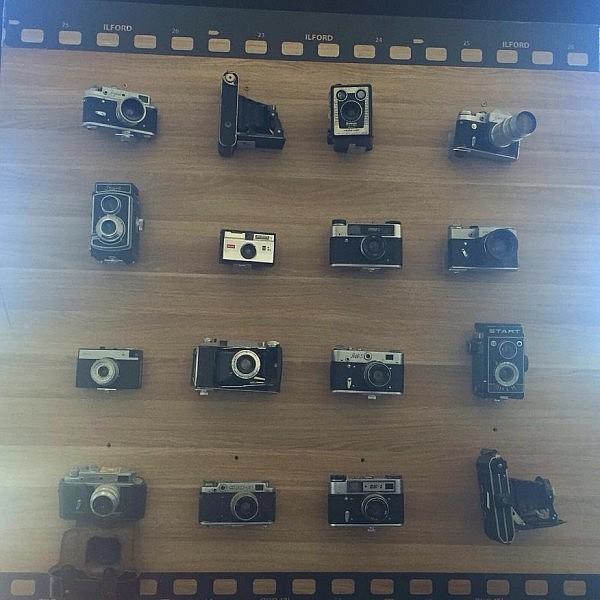 fotoaparat 600x600 Toller Sonntag – ein echter Sonntag # 51