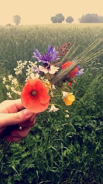 wiesenblumen 337x600 Toller Sonntag – ein echter Sonntag # 54